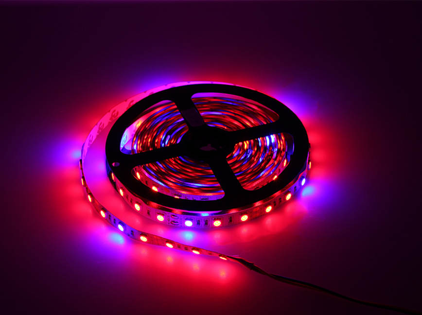 Red/Blue 3:1 ratio 12 volt 5050 LED grow ribbon